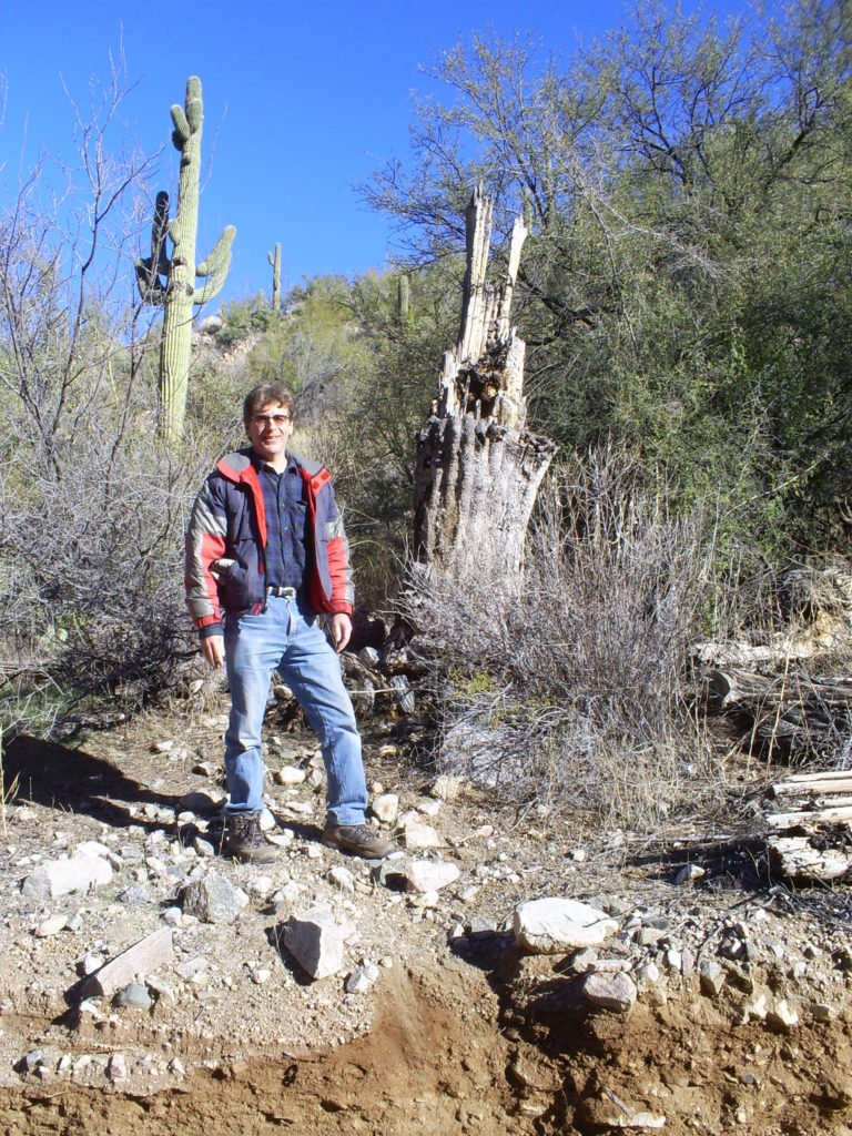 Searching for the world's tallest saguaro. This isn't it.